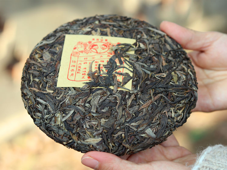 Bulang mountain puerh tea