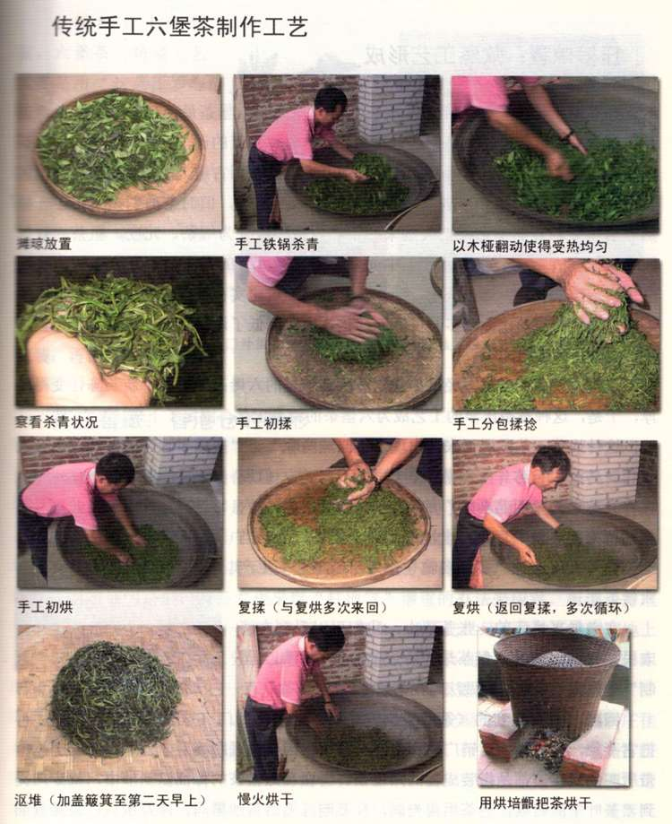 Traditional Liubao processing