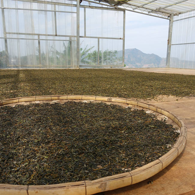 2020 Chawangpu Bada Puerh Tea 200g